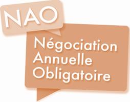 NAO 2021 : Ingénieurs et cadres et OATAM